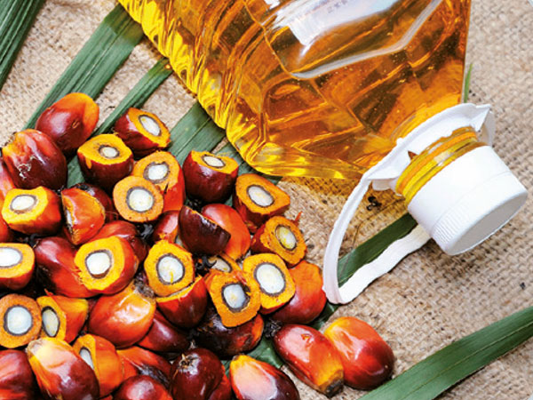Fourier Transform Near Infrared Spectroscopy for the Palm Oil Industry